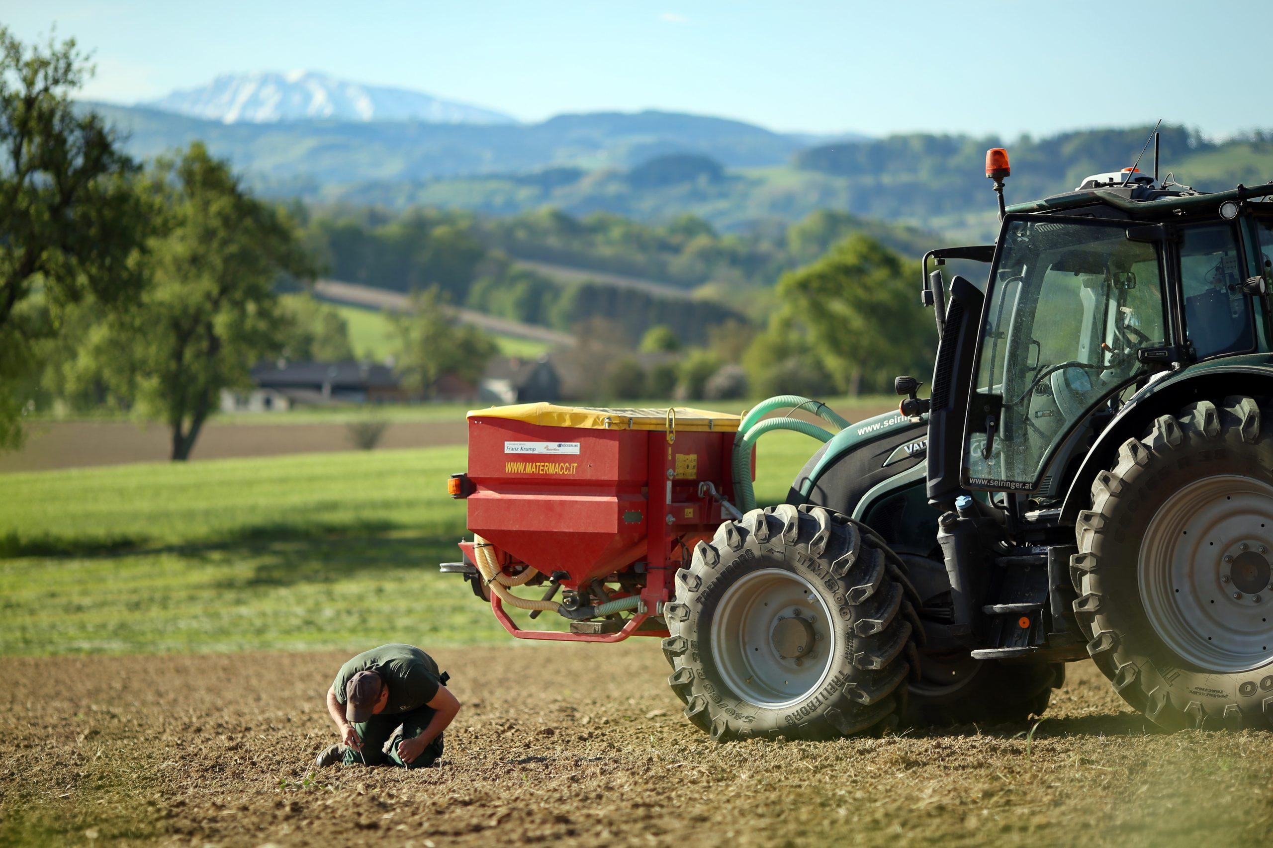 Sojaaussaat mit Ötscher im Hintergrund: Einlegetiefe der Sojabohnen wird geprüft.