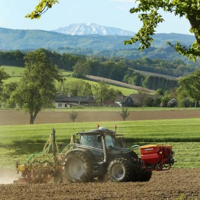 Sojaaussaat in Niederösterreich mit Ötscher im Hintergrund.
