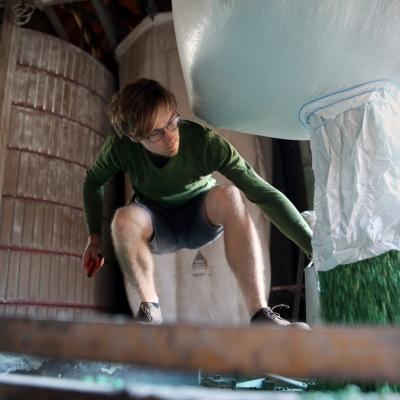 Sojabohnen werden zum Beimpfen geladen.