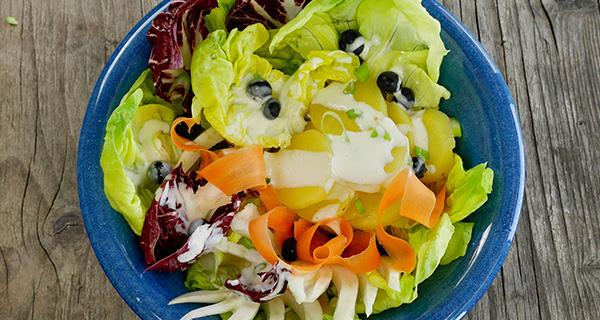 salatfenchel
